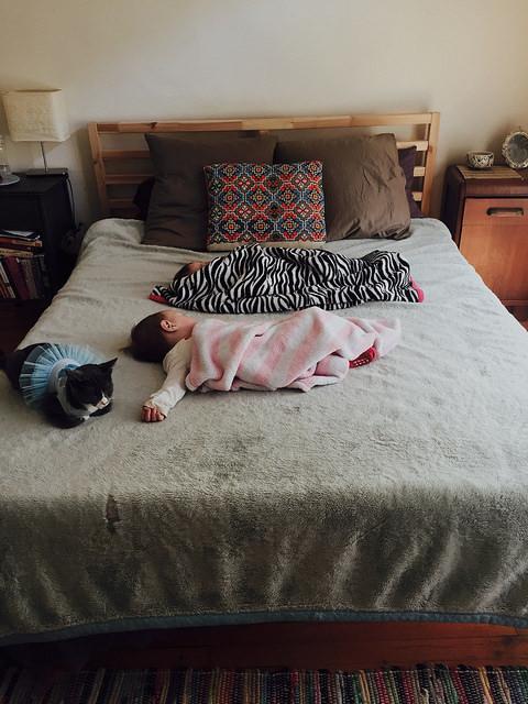 Wie lange sollten Babies im elterlichen Schlafzimmer schlafen ...