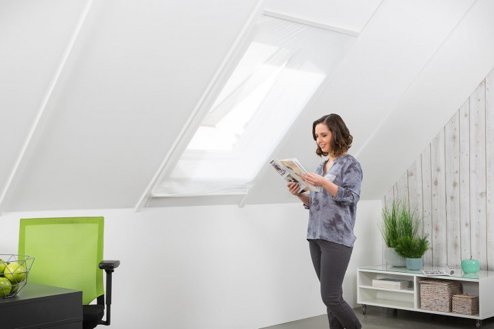 dachfenster-insektenstop